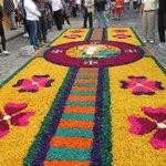 Flower Carpet during Semana Santa