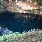 Photo of cenote from trip