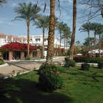 Garden area between beach and hotel