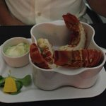 lobster appetizer - yum!