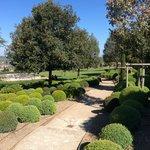 Garden in Chateau Amboise