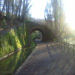 Cycle alongside the old canal path...