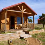 Buffalo Vista 2 Kings cabin #153