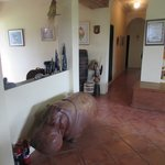 A Carved Hippo in the Owner's living room