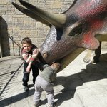they loved the dinosaur models