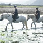 Horse riding in mull