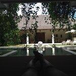 Salon + jardin