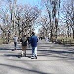 Paseo por Central Park con Greg