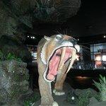 The dinosaur exhibit