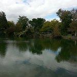 Vista de un lago en el parque