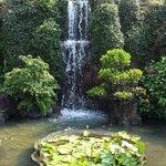 gardens in resort