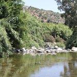 down to the river 2 (rio grande)