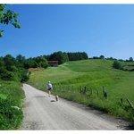 Vía verde de Plazaola