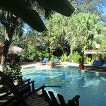La piscine de l'hôtel, et derrière le bar