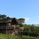 The bush hut at castle forest lodge