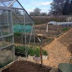 The Vegetable Garden, which supplies The Potting Shed Cafe