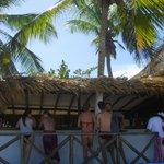 Palm Beach Margarita