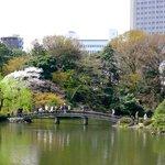 Japanese Bridge inside the park