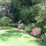 Beautiful Garden At Cornerway House