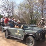 The Safari Jeep