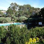 Vue sur jardin et piscine.  Jgg81