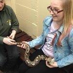 Holding a Python