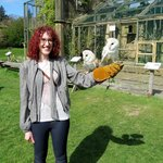 Hollie with owls