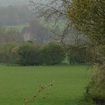 Looking toward the vicarage from the fields
