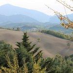 Panorama delle colline di fronte all'Agriturismo