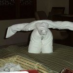 ELEPHANT TOWEL DONE BY ROOM STAFF