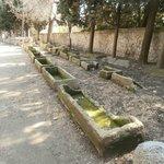 viale con sarcofagi