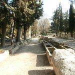 viale dei sarcofagi