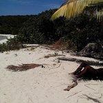 Tortuga beach on island of Culebrita Puerto Rico