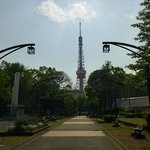 芝公園から東京タワーを眺める