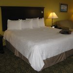 Frankfort Hampton Inn -- King Bed