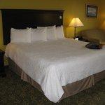 Frankfort Hampton Inn -- King Bed