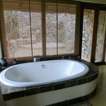 Big bathtub (and shower behind) overlooking the reserve