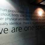 We are all one species.