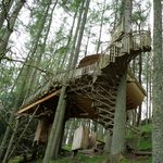 The treehouse itself