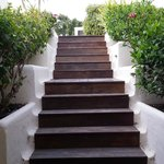 steps leading down to vily lily