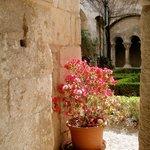 Cloister garden of the Ancien Monastere de St-Paul-de Mausole