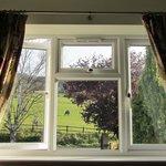 View from Prestbury room window