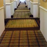 Holiday Inn Express Hotel & Suites Edmonton South Foto