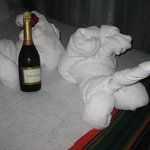 champagne they left on our bed for our honeymoon- so sweet!