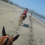 horseback riding on beach (not hotel beach)