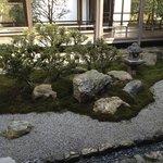 Garden outside of dinning room