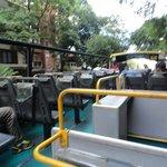 bus turistico em Buenos Aires
