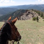 Saddle with a view