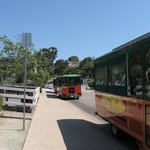Old Town Trolly tours just a walk across a parking lot