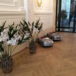 Gorgeous flowers by the reception area